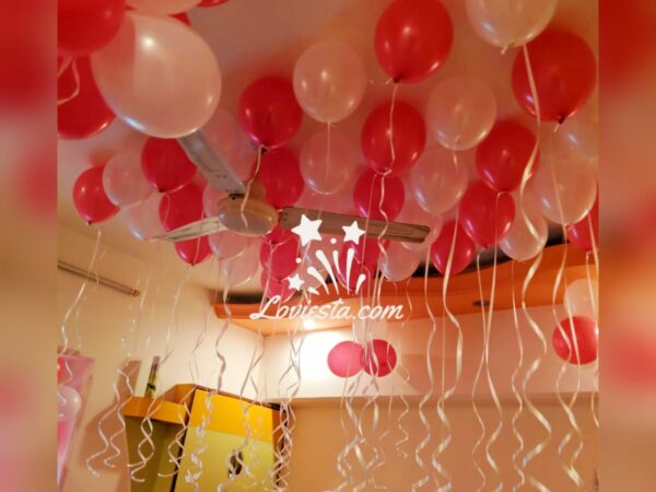 mini decoration delhi ncr